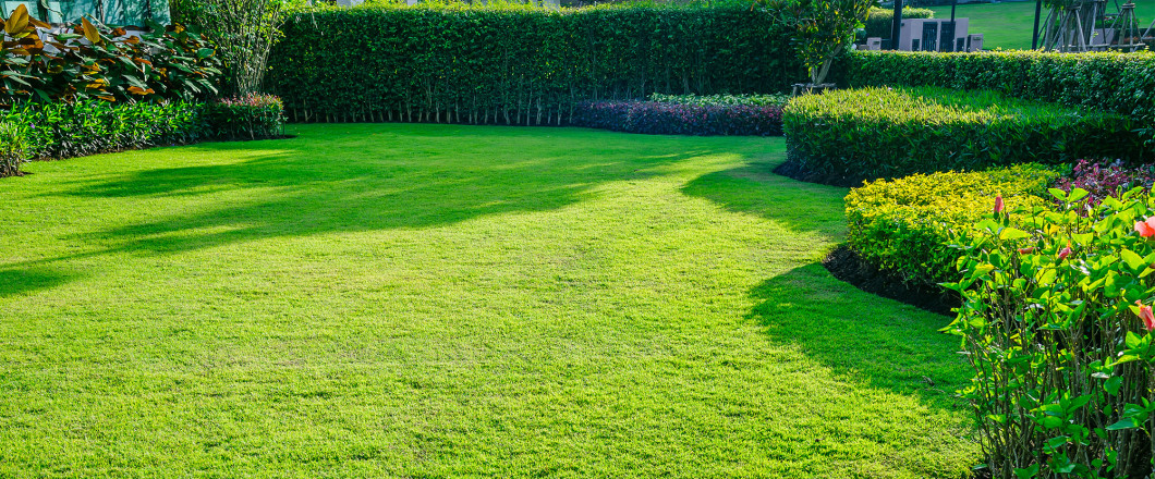 Make the Right Call When It Comes to Lawn Care